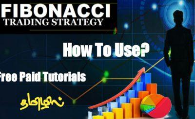 fibnocci tamil tutorials